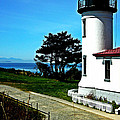 Admiralty Head Lighthouse View  by Kevin D Davis