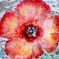 Adobe Poppy by Cj Carroll