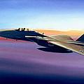 Advantage Eagle by Michael Swanson