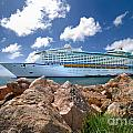 Adventure Of The Seas by Amy Cicconi