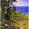 Aegean View by Madeline Ellis