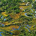 Aerial Of A Wetland, Over Northern by Mathieu Dupuis