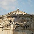 Aerides by Greek View