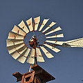Aermotor Windmill by Allen Sheffield