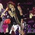 Aerosmith - Steven Tyler - Dsc00072 by Gary Gingrich Galleries