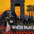 Afghan Hound Art - Luxor Poster by Sandra Sij