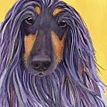 Afghan Hound by Greg and Linda Halom