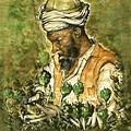 Afghani Harvest - Watercolor by Peter Potter