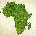 Africa Grass Map by Aged Pixel
