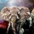 Africa - Protection by Carol Cavalaris