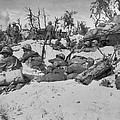 African American Marines Move by Everett