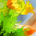 African Daisy I - Digital Paint by Debbie Portwood