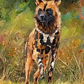 African Painted Wild Dog  by David Stribbling