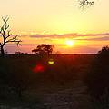 African Sunset by Evan Peller