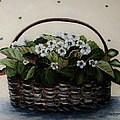 African Violets In Basket by Mimi Saint DAgneaux