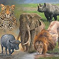 Africa's Big Five by David Stribbling