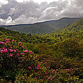 After The Storm At Graveyard Fields by Dennis Butler