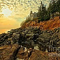 Afternoon At Bass Harbor by Adam Jewell