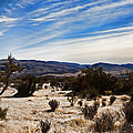 Afternoon At Red Rock by Evie Carrier