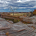 Agate Bridge In Petrified Forest National Park-arizona by Ruth Hager