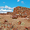 Agate House In Petrified Forest National Park-arizona  by Ruth Hager