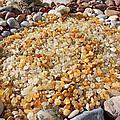 Agate Rock Garden Art Prints Coastal Beach by Baslee Troutman