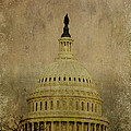 Aged Capitol Dome by Terry Rowe