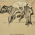 Agglomeration by Cecil Charles Windsor Aldin