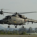 Agustawestland Lynx Helicopters by Remo Guidi