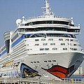 Aidaluna At Port Canaveral by Bradford Martin
