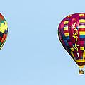 Air Balloons  0208 by Terri Winkler