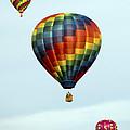 Air Balloons  0251 by Terri Winkler
