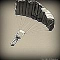 Airborne  by Kim Loftis