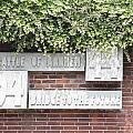 Airborne Monument In Arnhem by Ronald Jansen