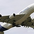 Airbus A380 In Flight by Andrew Wheeler