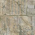 Aircraft Graveyard, Usa by Geoeye