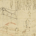 Aircraft Machine Has Been Reduced To Simplest Shape Wings Directly Put On Human Body By Straps  by Leonardo Da Vinci