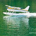 Aircraft Seaplane Taking Off On Calm Water Of Lake by Stephan Pietzko