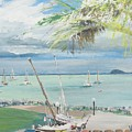 Airlie Beach  Australia by Vincent Alexander Booth