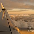 Airplane by Ron Sanford