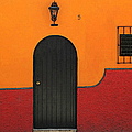 Ajijic Door No.4 by PJ Boylan