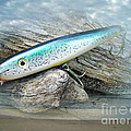 Ajs Baby Weakfish Saltwater Swimmer Fishing Lure by Mother Nature