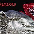 Alabama by Kathy Clark