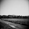 Alabama Mountains 4 by Verana Stark