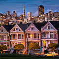 Alamo Square - Painted Ladies by Alexis Birkill