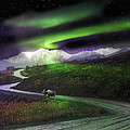Alaska Aurora Denali Highway by Dianne Roberson