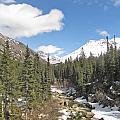 Alaska Country by Larry Marano