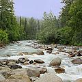Alaska - Little Susitna River by Kim Hojnacki