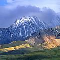 Alaska Range And Foothills Denali by Tim Fitzharris
