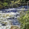 Alaskan Creek - Ketchikan by Jon Berghoff